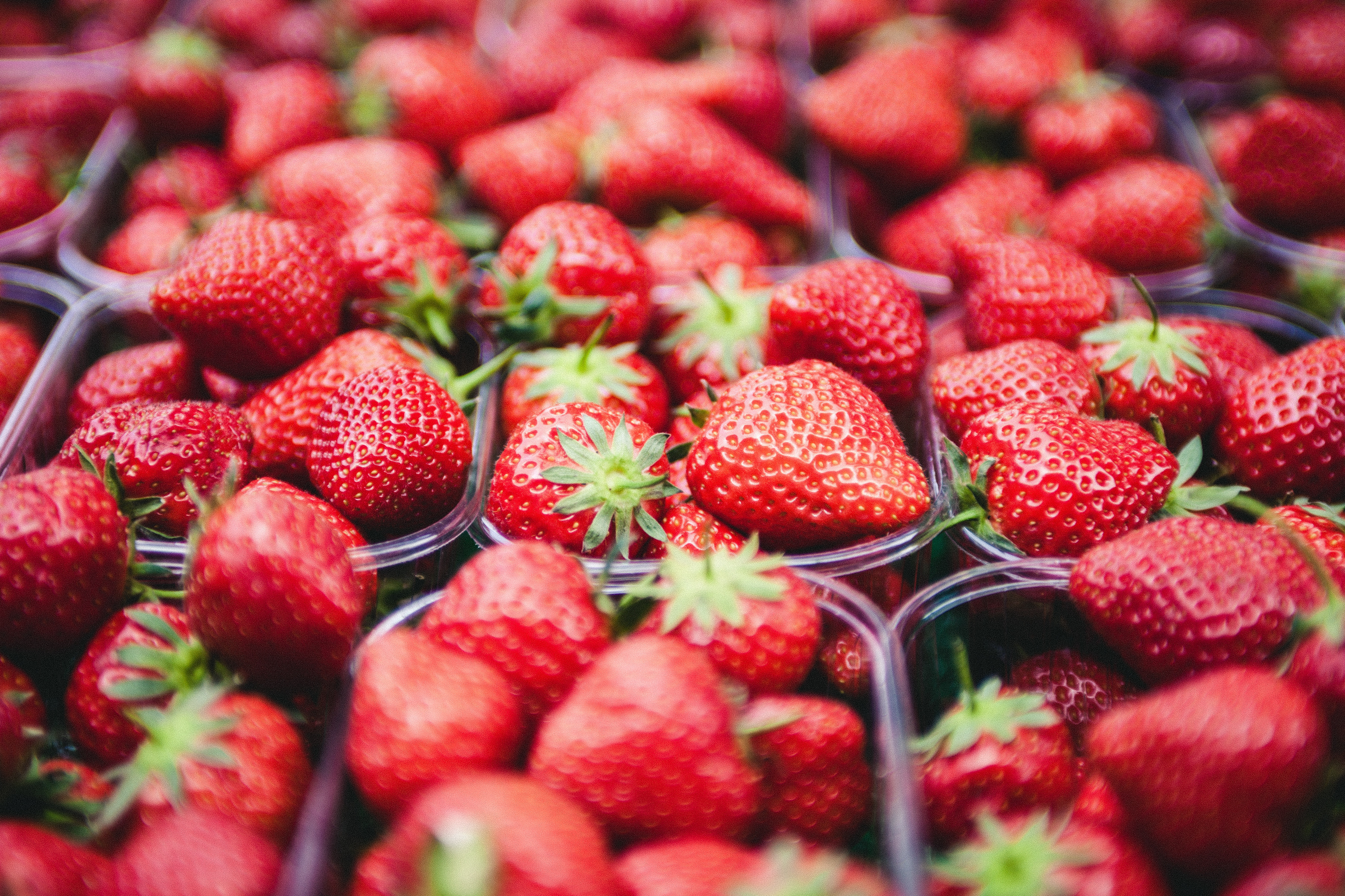 Pesticides in Food May Reduce Fertility